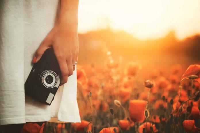 Top 5 Tips to Take Professional Photos